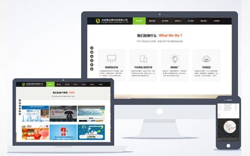 网站建设公司专注网站制作,网站设计,网站推广,SEO优化服务!